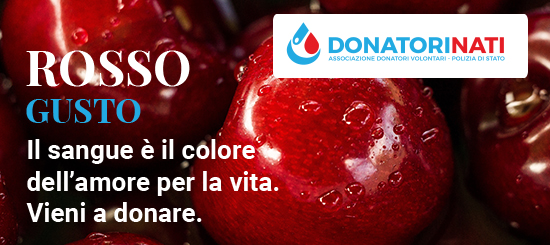 Donazioni di Novembre